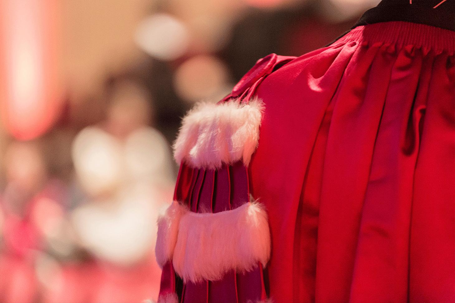Cérémonie Doctorat Honoris Causa