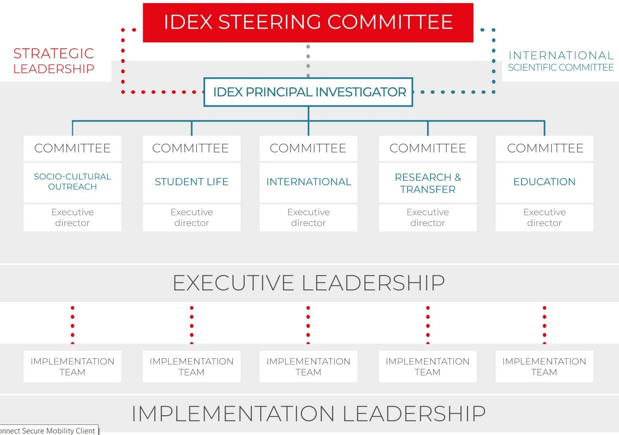 Governance of the Idex project