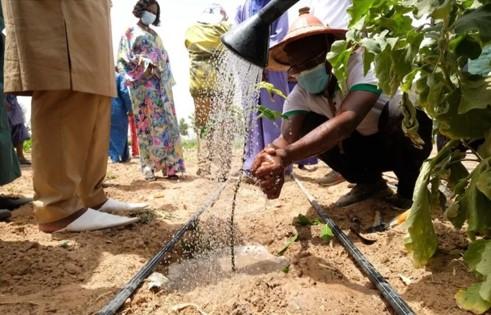 Le projet 3EC-Sahel
