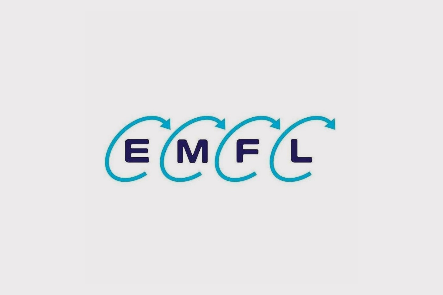 Logo European magnetic field laboratory (EMFL)
