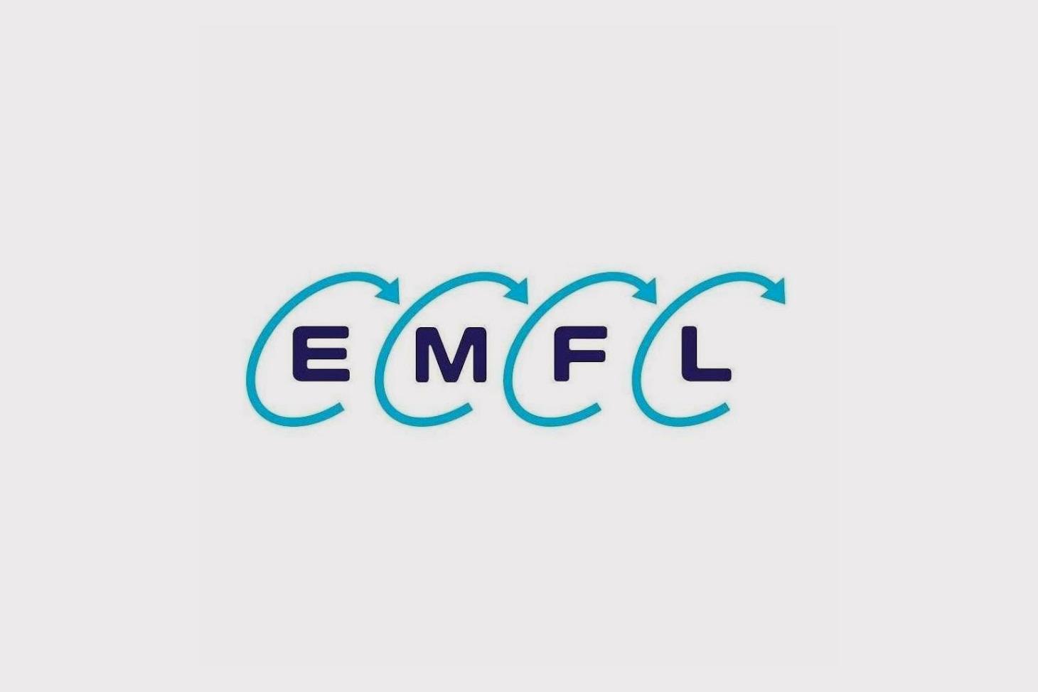 Logo European magnetic field laboratory (EMFL)