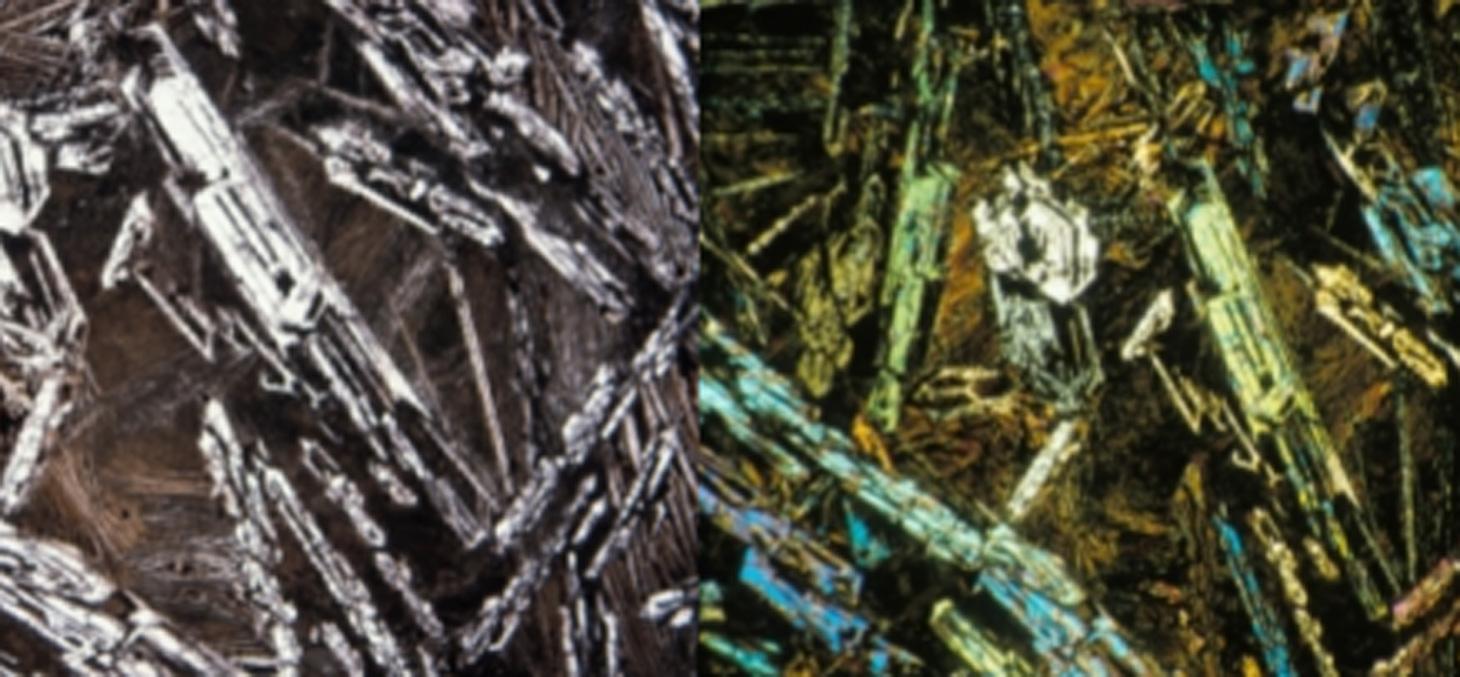 Photos des komatiites dans des lames minces (à gauche – lumière normale ; à droite - lumière polarisée). Les cristaux incomplets (squelettiques) sont de l'olivine. Ils se situent dans une matrice de verre dévitrifié et de pyroxène.© SOBOLEV et al. 2016
