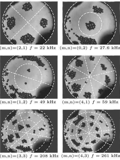 Figure1 : Vue de dessus de la cavité (de rayon 800 microns) avec agencement des billes (40 micron de diamètre) en fonction de la fréquence des ultrasons. Les lignes blanches pointillées sont les nœuds de vibration : on observe que les particules s'agrègen